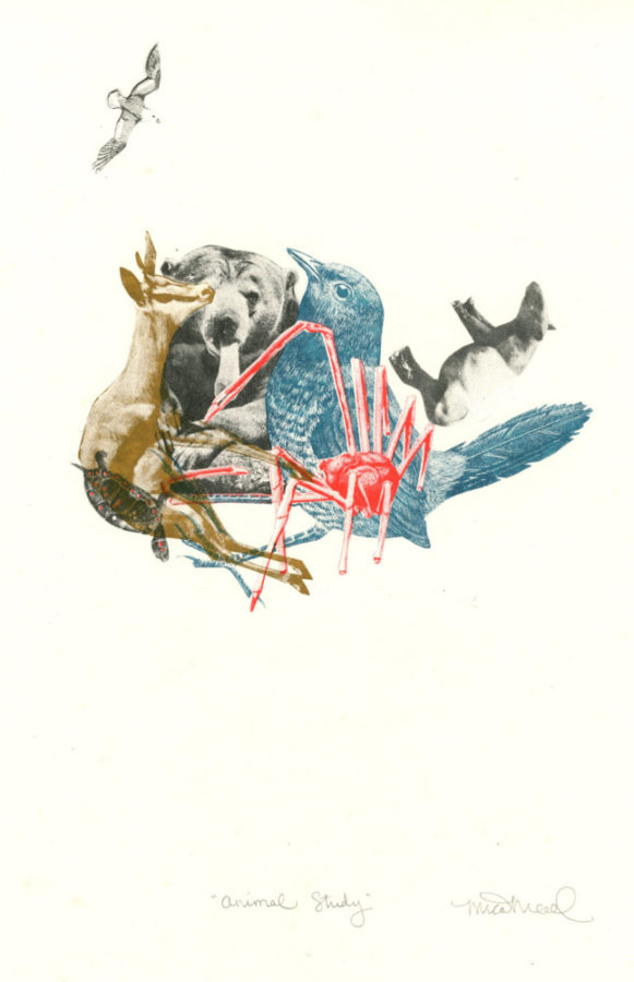 animal collage by Mica Mead